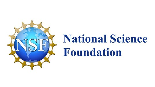 nsf2-blog
